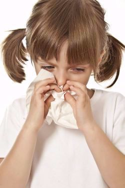 allergia vizsg225latok sz233kesfeh233rv225ron 233s budapesten